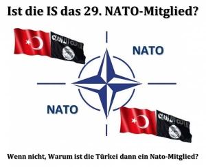 https://www.newroz.com/sites/default/files/imagecache/newroz_width_300/IS_Nato.jpg